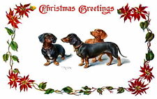 C.Reichert~Christmas Dachshund Puppy Dogs~Poinsettia Border~ NEW Lge Note Cards