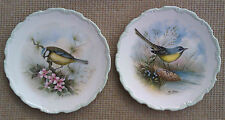 2 ROYAL ALBERT PLATES - WOODLAND BIRDS COLLECTION - BLUE TITMOUSE &  WAGTAIL