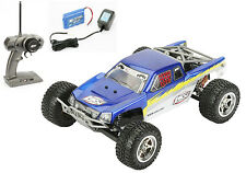 Losi 1/18 Mini-Desert Truck RTR Blue w/ Radio,Battery & Charger LOSB0202T2