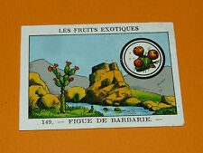 CHROMO 1932 CASINO N° 149 LES FRUITS EXOTIQUES FIGUE DE BARBARIE