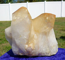 Giant LEMURIAN SEED Golden Healer Quartz Crystal Point w/ Record Keepers 8 Pound