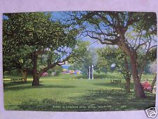 WACO, TEXAS, TX, SCENE IN CAMERON PARK! UNUSED COLOR LINEN POSTCARD TEX. PC SR30