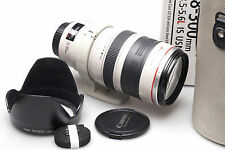 Canon EF 28-300 mm f/3.5-5.6 L IS USM