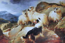 Walter Hunt, Collie and Sheep vintage art