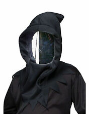 Haunted Mirror Mask Horror Ghoul Wraith Halloween Costume Accessory