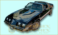 1981 Pontiac Firebird Turbo Trans Am Special Edition Bandit Decals & Stripes Kit