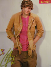 Liam Payne, One Direction, Louis Tomlinson, Double Four Page Foldout Poster