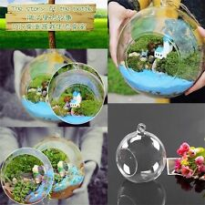 8cm Hanging Glass Flowers Plant Vase Stand Holder Terrarium Container GH