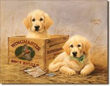 Yellow Labrador Wingmaster TIN SIGN vtg ammo ad retriever hunt dog poster 1201