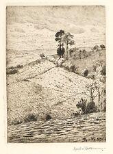 HANS RICHARD VON VOLKMANN - Landschaft bei Willingshausen - Radierung 1896