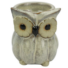 Owl Electric Tart Warmer