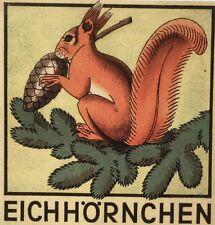 Schweizer Bilderbücher. – Schneebeli, W(illiam). Eichhörnchen. EA 1946