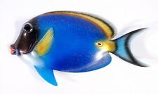 "Hand Painted 13"" Glitter Cartoon Tropical Fish Wall Mount Decor Long Blue 8C-6"