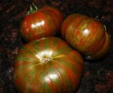 Chocolate Stripes Tomato Seed