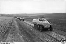 German Army APC's Ukraine 1944 World War 2, Reprint Photo 6x4 Inch
