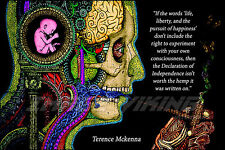 TERENCE MCKENNA POSTER PRINT PSYCHEDELIC ACID LSD CONSCIOUSNESS INDEPENDENCE