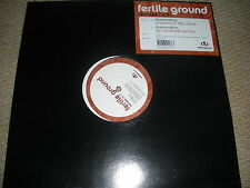 FERTILE GROUND ILLUMINATION MIXES EP ONENESS OF TWO + AFROBEAT COUNTERPOINT EP