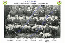 """SCOTLAND 1905 (v New Zealand) 12"""" x 8"""" RUGBY TEAM PHOTO PLAYERS NAMED"""