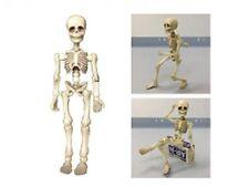 Pose skeleton man (1) [Japan Import]