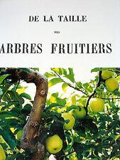 DE LA TAILLE DES ARBRES FRUITIERS par A. PUVIS Pêcher