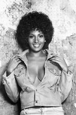 Pam Grier very busty photo open jacket sexy 11x17 Mini Poster