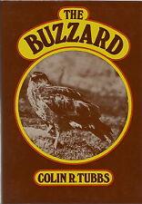 THE BUZZARD BY COLIN R TUBBS 1976 REPRINT BUZZARD ECOLOGY & HISTORY BIRD BOOK