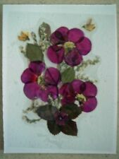 Assorted REAL PRESSED FLOWERS & LEAVES UNCUT PICTURES Ready To Frame, Free Ship