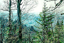 Great Smokey Mountains, a View of Newfound Gap Road from the Appalachian Trail