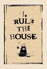 MAD OLD CAT LADY GREETING CARD: CATS RULE - NEW IN CELLO