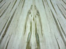 """Spalted Maple real natural wood veneer 48"""" x 120"""" x 1/40th"""" with paper backer AA"""