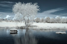 Nikon D90 Infrared converted 690nm Digital SLR Camera (Body only) Infrared