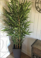 Indoor Outdoor Potted Realistic Artificial 2 Metres Tall Bamboo Tree Plant Green