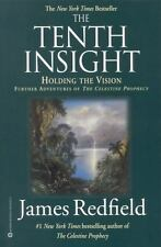 The Tenth Insight: Holding the Vision (Celestine Prophecy)