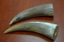 "2 PCS POLISHED HONEY WATER BUFFALO SOLID HORNS KNIFE CRAFT 8"" - 10"""