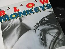 """BLOW MONKEYS IT DOESN'T HAVE TO BE THIS WAY (1980s POP ROCK) 12"""" SINGLE 45RPM"""