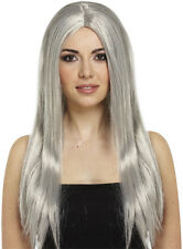 FANCY DRESS  HALLOWEEN WITCH WITCHES WIG GREY 65CM