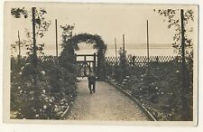 Vintage Postcard - Dog on Path (Unknown Location) - Unposted 1769