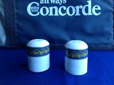 ROTAL DOULTON CONCORDE DROP NOSE CRUET SET OLD USED.