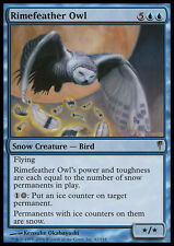MTG RIMEFEATHER OWL EXC - GUFO GELOPIUMA - CSP - MAGIC