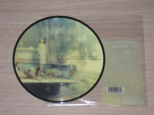 """RED HOT CHILI PEPPERS - DESECRATION SMILE / FUNKY MONKS- 45 GIRI 7"""" PICTURE DISC"""