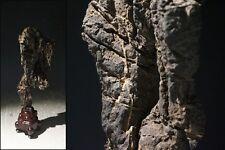 China Collection Suiseki / Taihu Lake stone / 太湖石 / W 10 H 32 cm