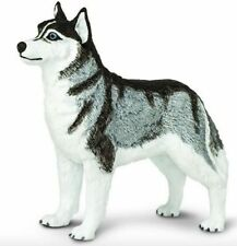 SAFARI BEST OF BREED DOGS - SIBERIAN HUSKY