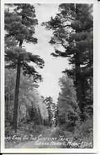 Unused RPPC WAY BACK ON THE GUNFLINT TRAIL Grand Marais, Minnesota, Postcard