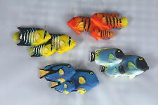 TROPICAL FISH FRIDGE MAGNETS - FULL SET OF 12- Includes Blue Tang - Dory Style