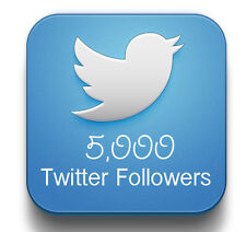 5000 HQ twitter followers - On Offer Price