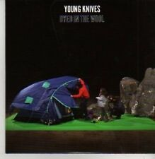 (AC195) Young Knives, Dyed In The Wool - DJ CD