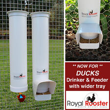 ROYAL ROOSTER Duck Waterer / Drinker & Feeder Set - Suitable for wider beaks