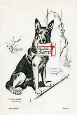 1934 Art~Sitting German Shepherd Puppy Dog w Christmas Gift~ NEW Lge Note Cards