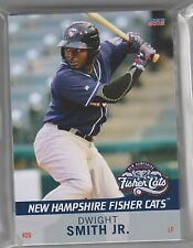 COMPLETE 2015 NEW HAMPSHIRE FISHER CATS TEAM SET MINORS AA TORONTO