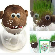 New 1xCool Mini DIY Magic Grass Plant Pot Grass Head Doll Kids Education Toy S